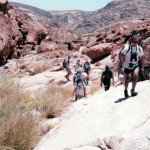 Trekking Through the Red Rock Canyon